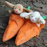 Nest Bunny In A Carrot