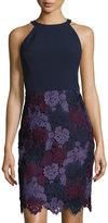 Maggy London Tri-Tone Lace & Crepe Sheath Dress, Blue/Black