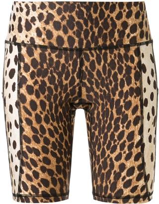 R 13 Cheetah Print Bicycle Shorts