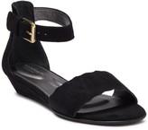 Rockport Zandra Curved Ankle Sandal