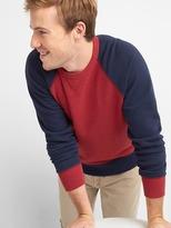 Gap Colorblock raglan crewneck sweatshirt