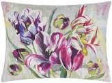 Designers Guild Tulipa Stellata Cushion - 60x45cm - Fuchsia