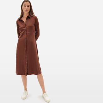 Everlane The Luxe Cotton Shirtdress