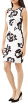 Hobbs London Salvador Printed Dress