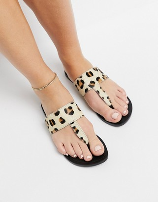 ASOS DESIGN Function leather toe thong sandals in leopard