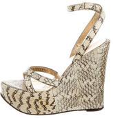 Dolce & Gabbana Python Print Platform Wedges
