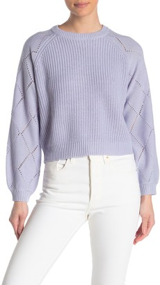 Elodie K Pointelle Sleeve Sweater