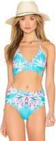 6 Shore Road La Playa Bikini Top