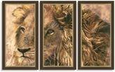 Bed Bath & Beyond Lion Triptych Framed Art