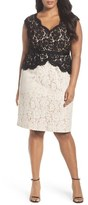 Eliza J Colorblock Lace Sheath (Plus Size)