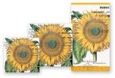 Michel Design Works Sunflower Hostess Napkins, Package of 15, 3-Ply