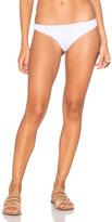 Indah Zebra Bikini Bottom