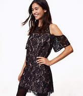 LOFT Boudoir Lace Cold Shoulder Dress