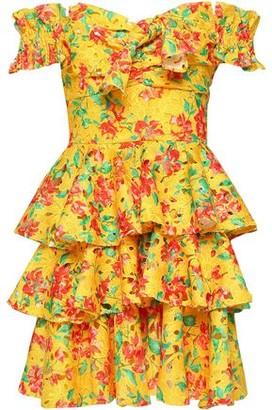 Caroline Constas Hellena Off-the-shoulder Floral-print Crochet-knit Mini Dress