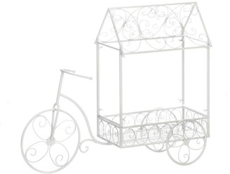 Overstock Newly Vintage Bicycle Plant House