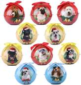 Roxie 2017 Annual Edition Christmas tree Hanging Ornaments Handcrafted Xmas Decor Pendants Shatterproof Pet Balls with Twinkling Light 3 Inch