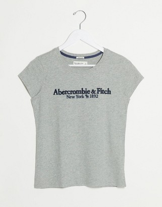 Abercrombie & Fitch logo round neck t-shirt in grey