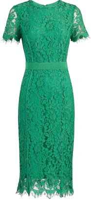 New York & Co. Romina Sheath Dress - Eva Mendes Fiesta Collection