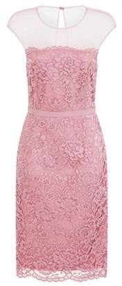 Dorothy Perkins Womens **Little Mistress Blush Lace Bodycon Dress