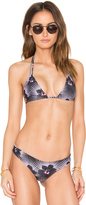 Acacia Swimwear Cannons Top