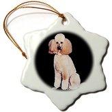 Pink Poodle 3dRose LLC orn_255_1 Dogs Poodle Ornaments
