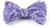The Tie Bar Lavender Organic Paisley Bow Tie