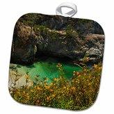 3dRose Danita Delimont - Coastline - China Cove, Beach, Point Lobos State Reserve, Carmel, California, USA - 8x8 Potholder (phl_230170_1)