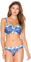 Maaji Tropic Cubism Bikini Top