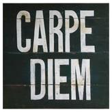 Nobrand No Brand Carpe Diem Printed Canvas with Gel Coat