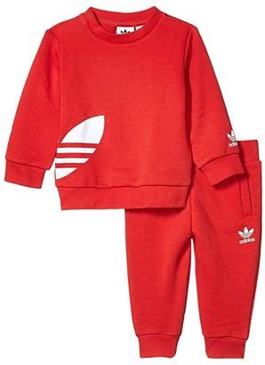 Adidas Originals Kids Big Trefoil Sweatsuit (Infant/Toddler) (Lush Red/White) Kid's Active Sets