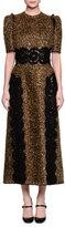 Dolce & Gabbana Short-Sleeve Metallic Dress W/Lace Appliqué, Gold/Black