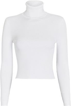 A.L.C. Eberly Rib Knit Turtleneck Top