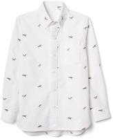 Gap Shark oxford long sleeve shirt