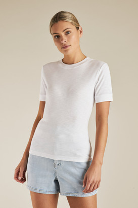 Seed Heritage Fitted Tee