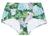 Dolce & Gabbana High-waisted bikini bottoms