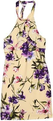 Bebe Floral Print Scuba Dress