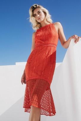 Paper Dolls Kenton Orange Peplum Midi Dress