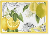 Williams-Sonoma Williams Sonoma Meyer Lemon Place Mats, Set of 4