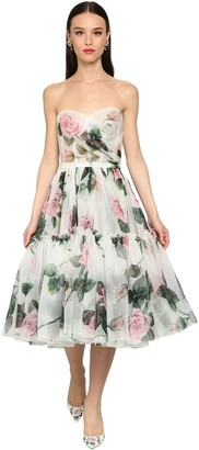 Dolce & Gabbana Printed Sheer Organza Bustier Midi Dress