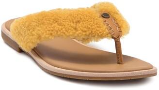 UGG Alicia Genuine Shearling Sandal