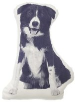 Areaware Border Collie Pillow