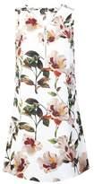 Dorothy Perkins Womens Izabel London Multi Colour Floral Print Zip Neck Shift Dress