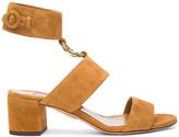 Aquazzura Suede Safari Sandals in Brown.