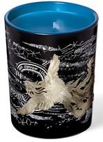 Diptyque Larmes D'Encens/incense Tears Phoenix Scented Candle