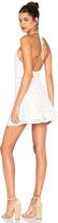 J.o.a. Sleeveless Halter Neck Lace Dress