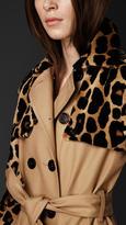 Burberry Mink Gabardine Trench Coat