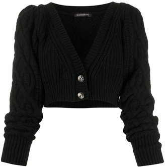Wandering Chunky Knit Cropped Cardigan