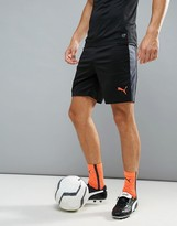 Puma Football Evotrg Training Tech Shorts In Black 65534406