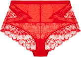 Wisteria Red Leavers lace high-waist briefs