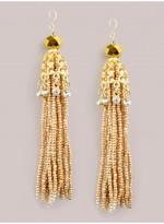 IGIGI Yelena Earrings